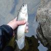 中禅寺湖釣行 9回目  大荒れでした。