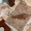 雨田甘夏、夏バテです。【猫と毛布とフローリング事情】