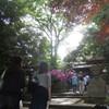 根津神社(其の二)