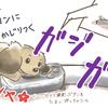 犬の多頭飼い暮らし漫画:おまけイラスト④【犬とリングフィットアドベンチャーその2】