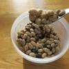 自家製納豆を作ってみる!美味しい作り方のコツと必要な材料について