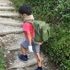小学校一年生でも登れるよ。百名山・剣山