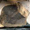 家でできる趣味生活 化石クリーニングに挑戦 初心者の私でもできるのか? #化石採集 #白亜紀 #アンモナイト