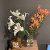 【花を飾る】#10 白いユリと赤のアリストロメリア