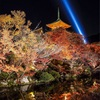 Autumn Leaves Spots in Kyoto 2018 Kiyomizu Temple