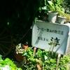 窪川の名店 純喫茶 淳