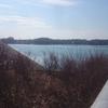 午後の多摩湖