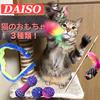 ダイソーの猫のおもちゃ3種類で遊んでみた!【運動不足を解消!】