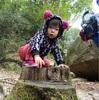 2〜3歳の子供と登山してみて気付いた危険なこと、注意すること