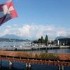 【スイスのネクタフローはちみつ】今年が日本上陸20周年です
