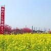 埼玉県のここにしかない魅力#17八潮市