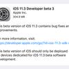 iOS11.3 Beta3リリース AirPlay2が削除など