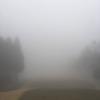 また、雨のゴルフ?