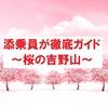 【ツベルクリンWalker】添乗員が徹底ガイド~桜の吉野山(奈良県)~