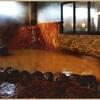 【今なら500円】大阪で最も濃い温泉、松原天然温泉You,ゆ~に行ってきた【大阪の有馬温泉】