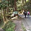 陣馬山→高尾山