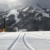 シーズン2日目は白馬岩岳スノーフィールド。新雪5cm、エッジが噛むカービング日和