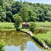 赤坂浮島弁財天の池(茨城県茨城)
