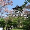 日本一周40日目 岐阜ー愛知 国宝犬山城とプチ登山で岐阜城