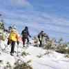 冬の礼文島でスノーハイクを楽しむ方法