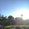 [ハワイ留学] 現役大学生の毎日日記 3月12日