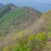 新緑の御荷鉾スーパー林道(観能〜八倉峠)<後編>