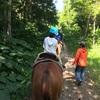 【旅行記】馬に乗って、北海道の森の中を歩いてみたよ!