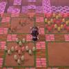 【どうぶつの森】お花畑を作りました(花、、少ないとか言わない)【マイデザイン】