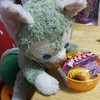 かぼちゃと紫芋のパフェ♪とジェラトーニとかぼちゃ達♪