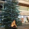 昭島モリタウンクリスマス!!サーティーワン&くら寿司さん☆*:.。. o(≧▽≦)o .。.:*☆