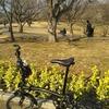 【サーカスのクマ】折り畳み自転車ブロンプトンのスピード&乗り心地。