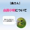 【鳥さん】金属中毒について