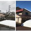 長岡も雪解けが進みました