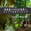 西表島ならではの体験!ジャングル&鍾乳洞(ケイビング)でRPGの世界へ!