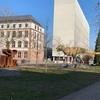 ゼンケンベルク自然博物館を見学する