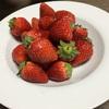 【朝フルーツ習慣】じゃなくて・・