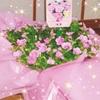 今年の母の日ギフト カリブラコアの鉢植え