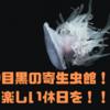 東京の中目黒のオススメは「寄生虫館」!大人の休日は、寄生虫博物館で新たな体験をしてみよう!