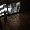 ひとり暮らしで1階に住む:防犯に関して