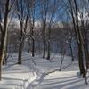 3泊4日の冬山大周遊 ①