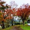 房総ダム湖の晩秋の風景