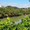 下池(高知県高知)