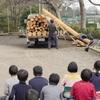 新しい田畑.    Schulfelder bekommen neue Holzramen