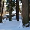 雪の香雪園、園亭…