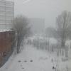 また雪ふってきた