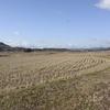 新庄地区の田園風景と一眼レフ