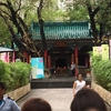 香港旅行その8 占いのお寺とホームシック