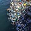 ビーチと水中の cleanup