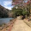 京都嵐山 祐斎亭へ行ってきました。