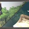 2020年2月バージョンアップ 考察 ついにきた召喚獣セイレーン!